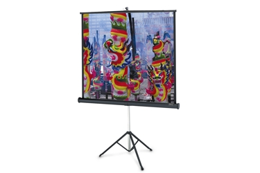 Projecta Portable and Tripod Screen
